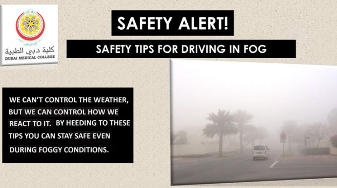 Safety Tips In Driving During Foggy Conditions